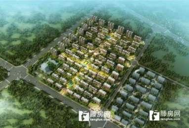 滨江国际花园